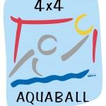 logo aquaball DSV
